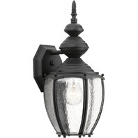 "Black Roman Coach 1-Light 15"" Outdoor Wall Sconce with Clear Seeded Glass Panels"